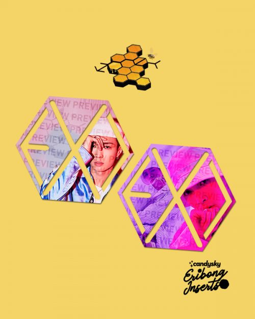 EXO Eribong Inserts: LAY Honey Collection