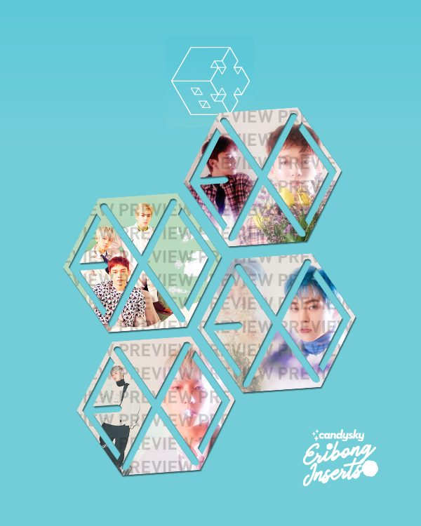 EXO Eribong Inserts: EXO-CBX Blooming Day Collection