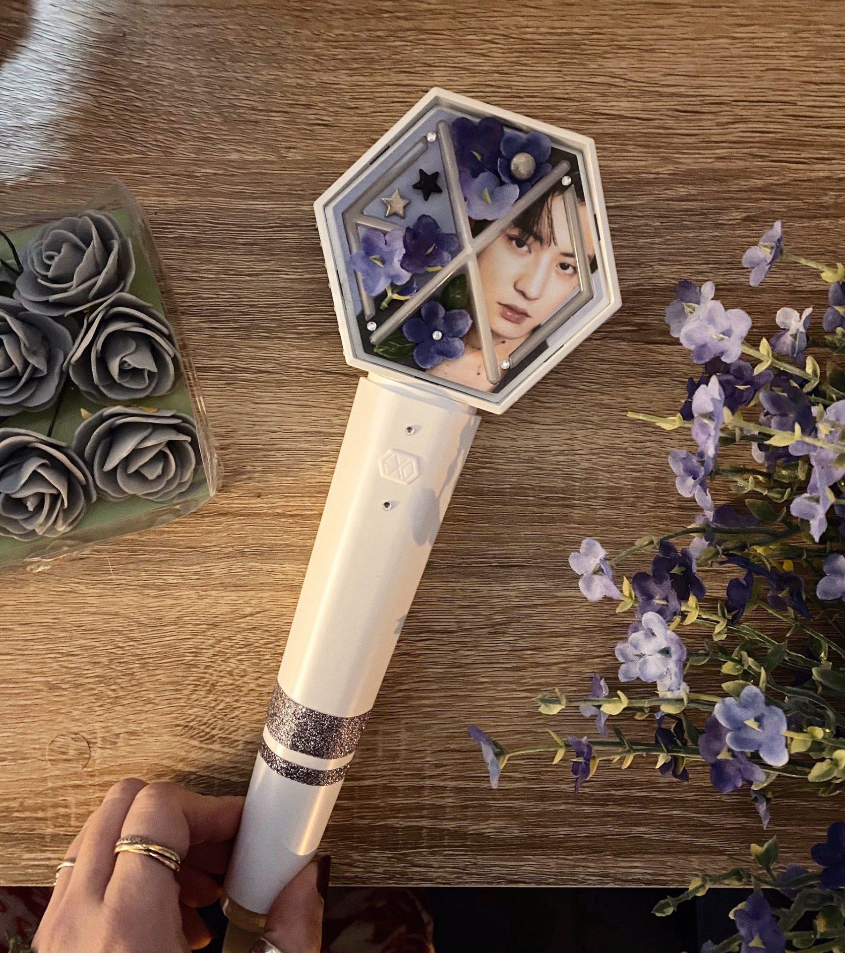 EXO Eribong Inserts: Seasons Greetings 2019 Chanyeol