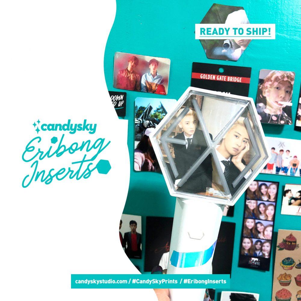 EXO Eribong Inserts: Seasons Greetings 2020 - CHANYEOL