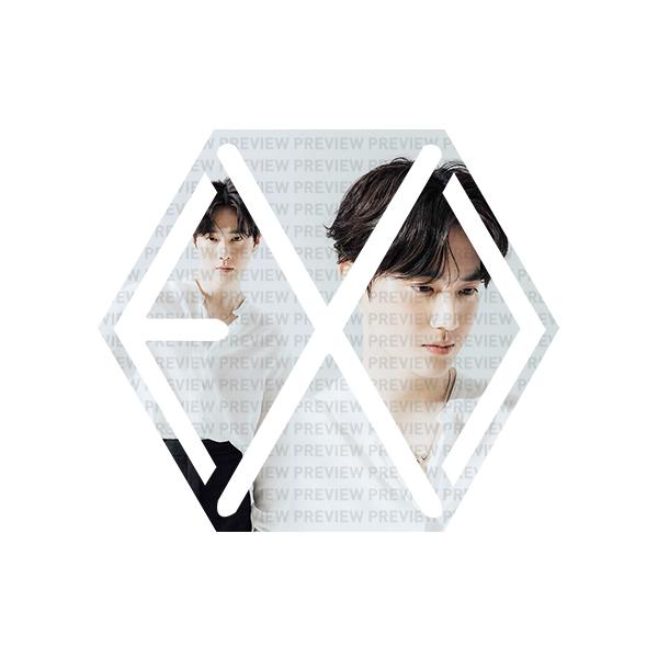 EXO Eribong Inserts: SUHO Self-Portrait V1