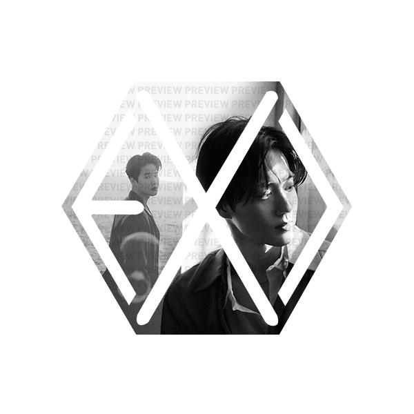 EXO Eribong Inserts: SUHO Self-Portrait V3