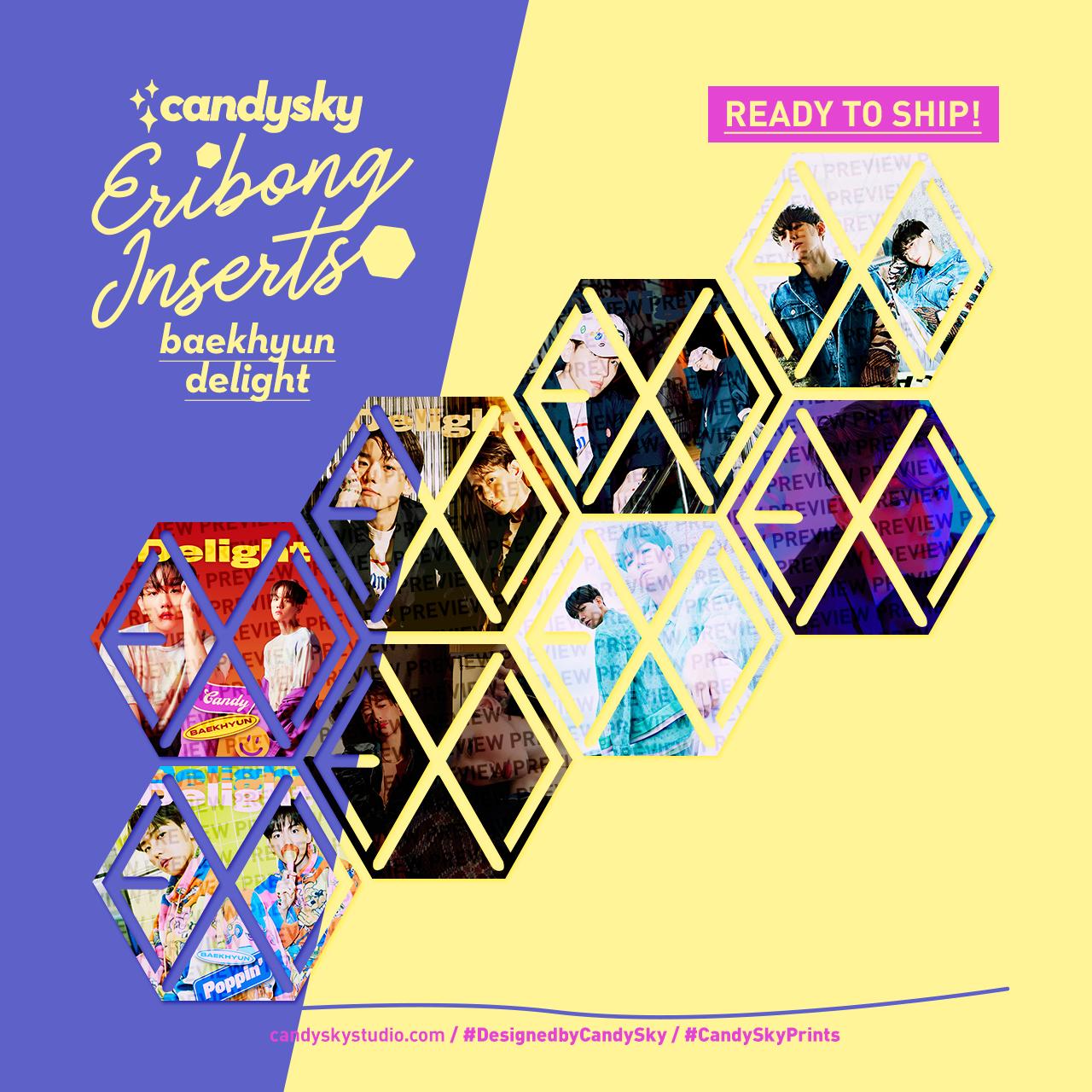 EXO Eribong Inserts: BAEKHYUN Delight Collection