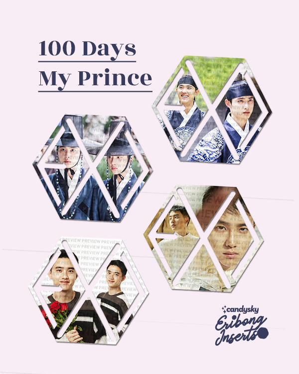 EXO Eribong Inserts: D.O. 100 Days My Prince Collection