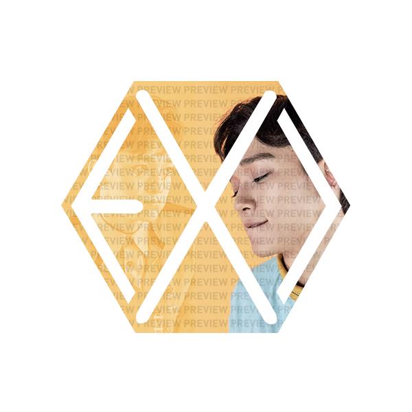 EXO Eribong Inserts - Lucky One - CHEN